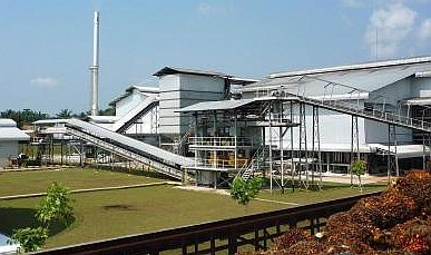 Energy Audits of 8 Palm Oil Mills with Capacities between 30 - 50 Tons/hr